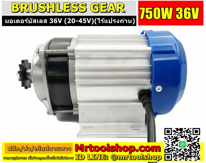 Brushless Motor DC 750W 36V