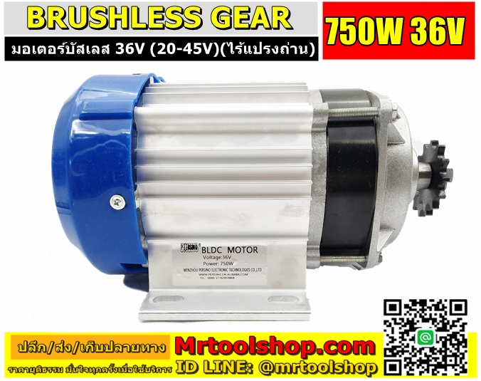Brushless Motor DC 36V 750W